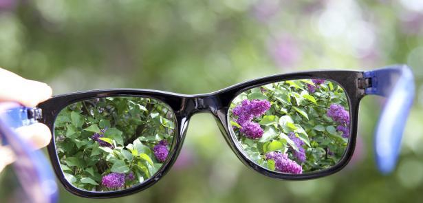 looking through glasses at lilacs