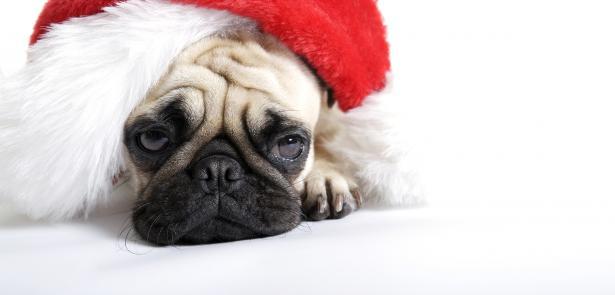 Where Is My Christmas Joy?