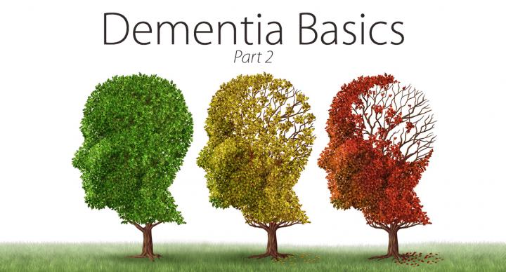 Dementia Basics—Part 2