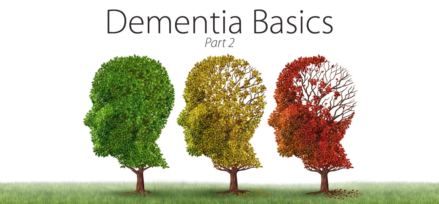 "three trees, one with green leaves, one with yellow leaves, and one with lots of missing red leaves. Words ""Part 2"" are on the top and ""Dementia Basics"""