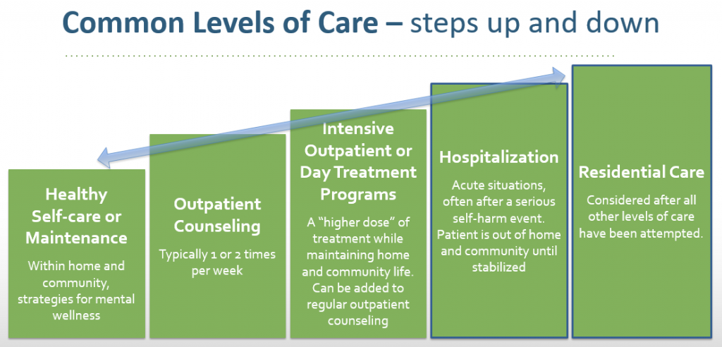 levels of care infographic
