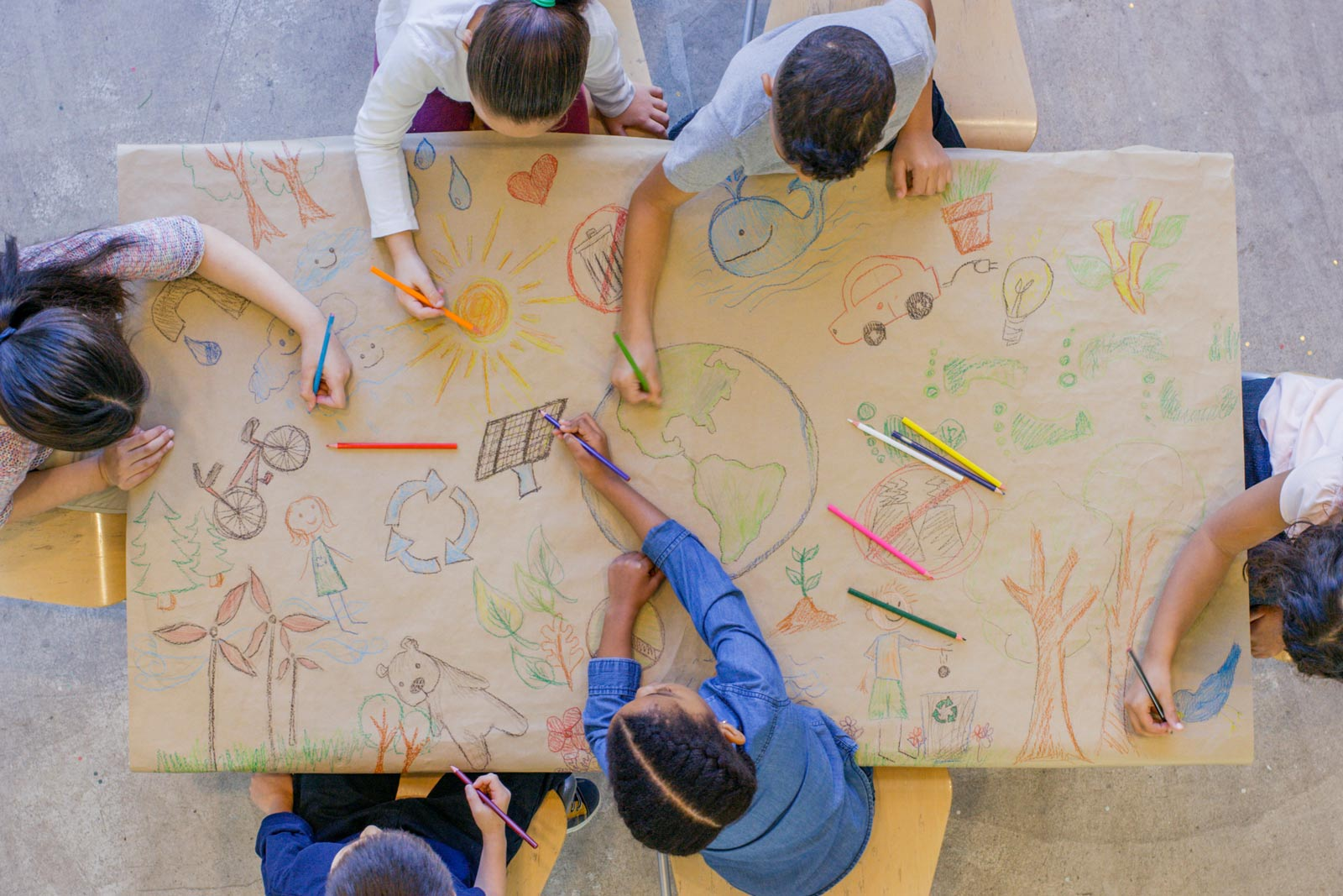 Essential Steps for Providing Successful Learning Environments
